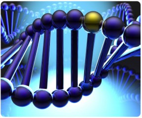 gen nedir